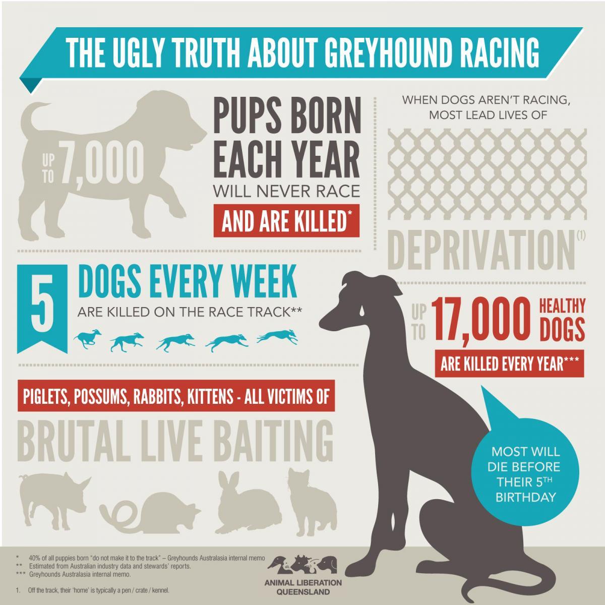 Greyhound Stop Melbourne