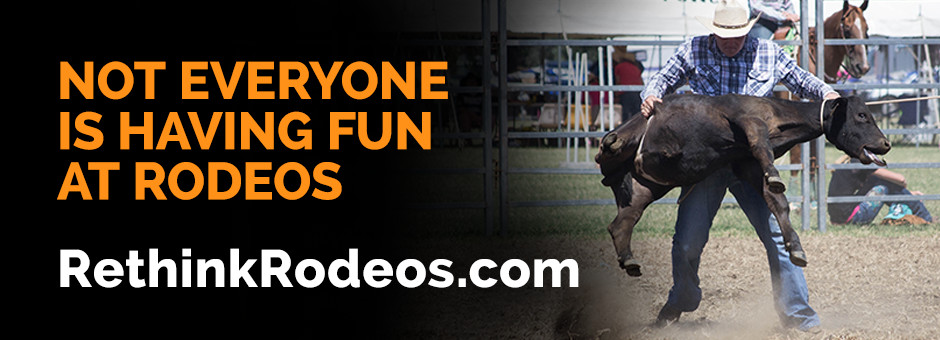 RethinkRodeos.com - Not everyone is having fun at rodeos