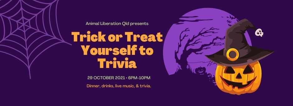 Tricky or Treat Yourself to Trivia - halloween pumpkin and spider web