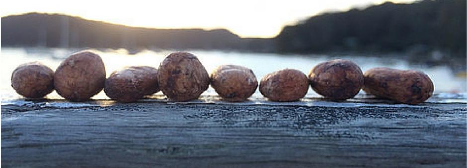 The Chocolate Yogi - chocolates on driftwood - via thechocolateyogi.com.au