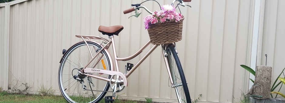 Bike - Mother's Day Raffle Prize