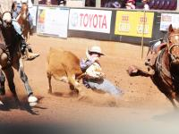 Mount Isa Rodeo 2014 - Animal Liberation Qld