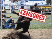 Rodeo Billboard Censored